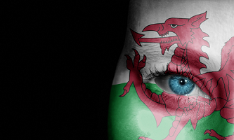 Welsh flag face painted